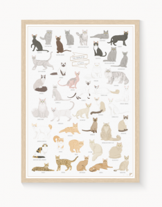 "Plakat ""The World of Cats"""